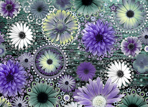Tidal Bloom - Purple and Green Daisy Art